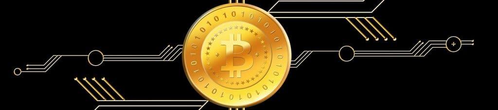 Welke crypto stijgt?